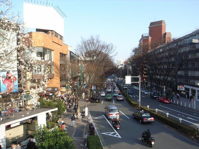 東京・表参道